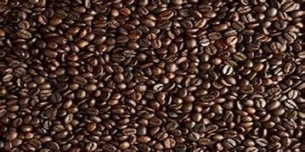 فروش عمده قهوه فله