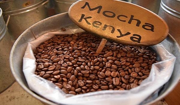 فروش بهترین برندهای دانه قهوه