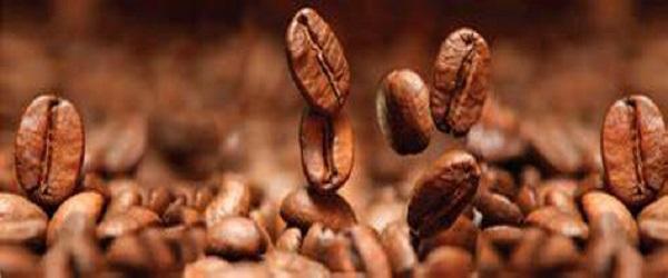 خرید دانه قهوه برند