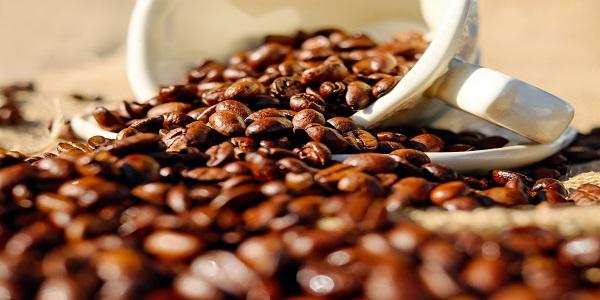 فروش عمده دانه قهوه در شیراز