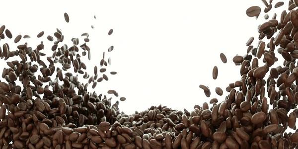 مرکز پخش قهوه در مشهد