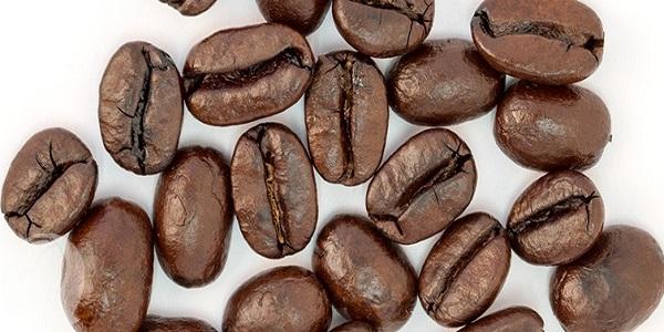 خرید عمده دانه قهوه عربیکا