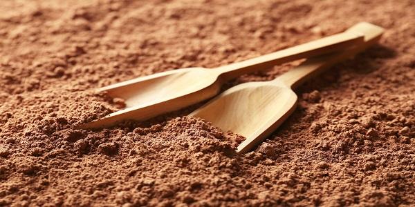 فروش مستقیم پودر کاکائو اسپانیایی