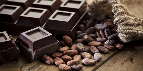 نمایندگی پخش پودر شکلات
