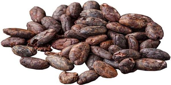 قیمت دانه کاکائو در ایران