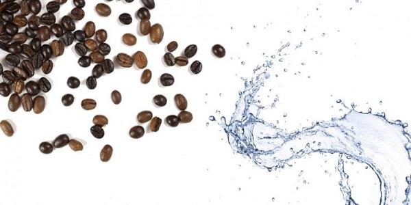 فروش دانه قهوه میکس