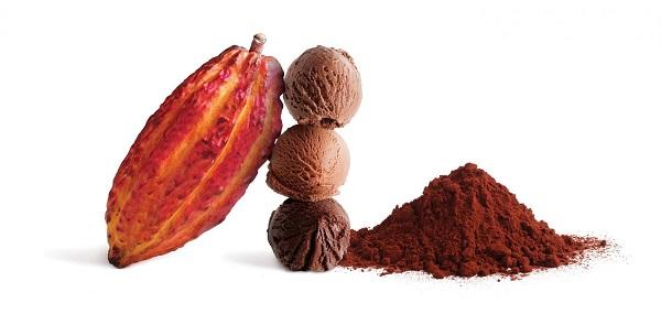 قیمت پودر کاکائو بنسروپ